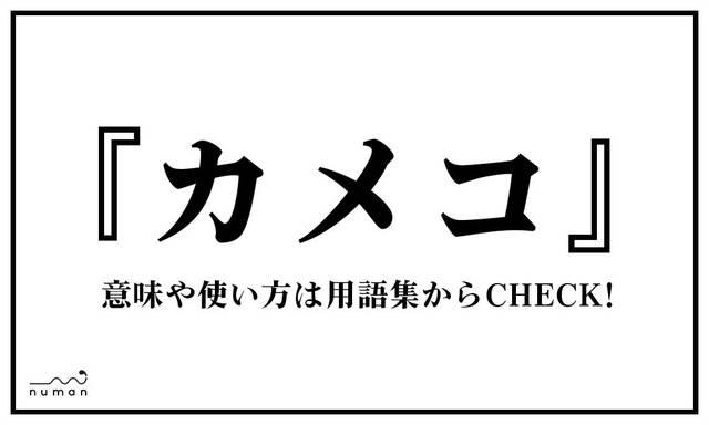 カメコ(かめこ)