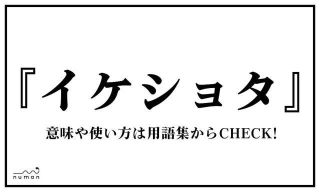 イケショタ(いけしょた)