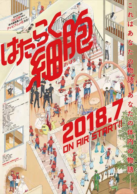 花澤香菜、前野智昭、小野大輔ら出演決定! 2018年7月放送テレビアニメ「はたらく細胞」メインキャスト5名を発表!