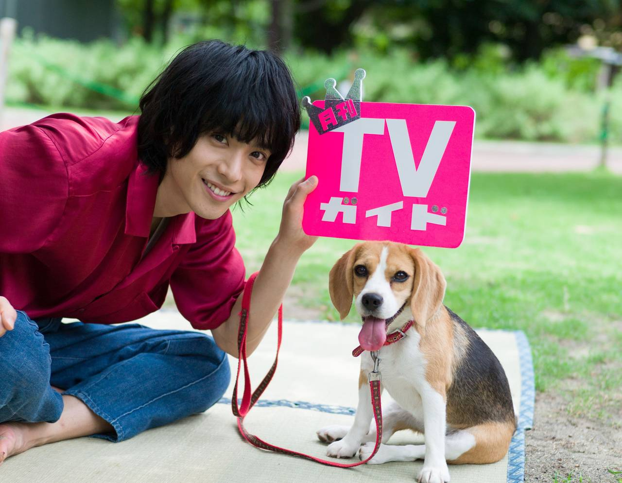 黒羽麻璃央がビーグル犬とお散歩ロケ♪ 『月刊TVガイド』単独初登場!