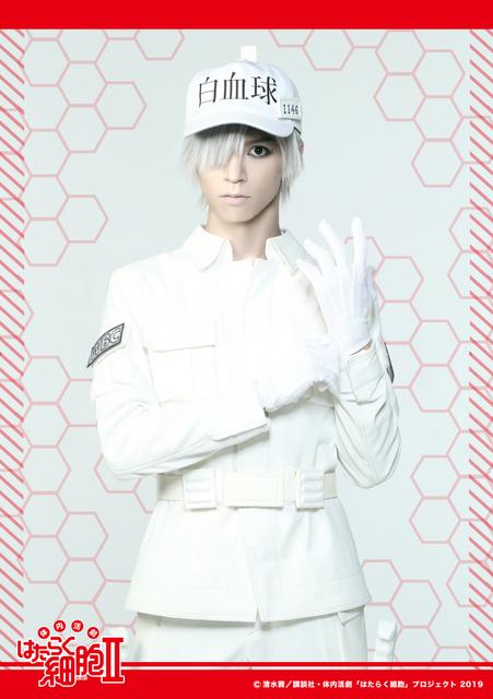 北村諒、君沢ユウキらがウイルス退治!『体内活劇「はたらく細胞」Ⅱ』キャラクタービジュアル解禁!