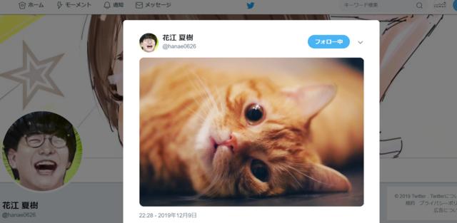 """花江夏樹、公式Twitterが""""猫bot""""になる。猫画像あげすぎの罪にファン「最高じゃないか」"""