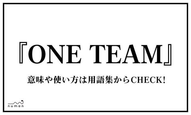 ONE TEAM(わんちーむ)
