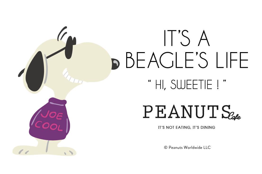 スヌーピーがサングラスで変身♪ 「PEANUTS Cafe」「PEANUTS DINER」で限定メニューやグッズ販売♪