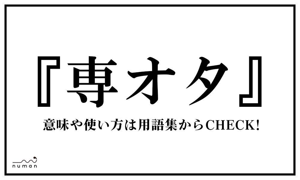 専オタ(せんおた)