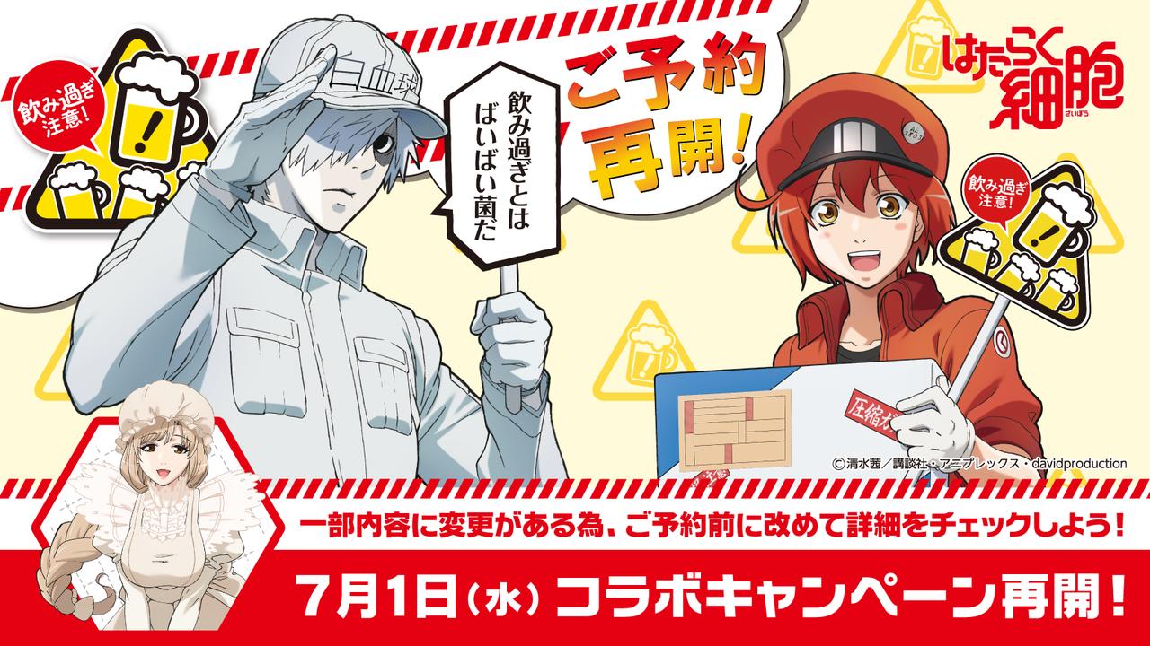 TVアニメ『はたらく細胞』限定グッズが貰える!モンテローザとのコラボが再開!