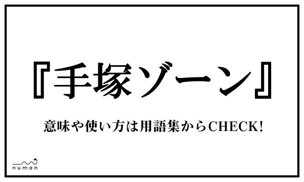 手塚ゾーン(てづかぞーん)