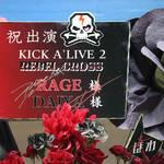 ARP 横浜 ライブ レポート『KICK A'LIVE2』numan 37
