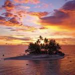 『Starry Island 南十字星を見上げて』 画像2