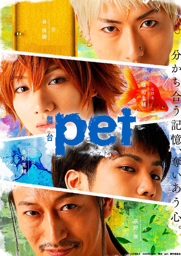 舞台「pet」キービジュアル