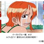 アニメ『ONE PIECE』放送開始20周年記念2