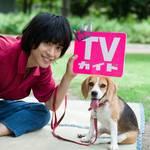 黒羽麻璃央「月刊TVガイド10月号」1