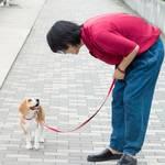 黒羽麻璃央「月刊TVガイド10月号」2