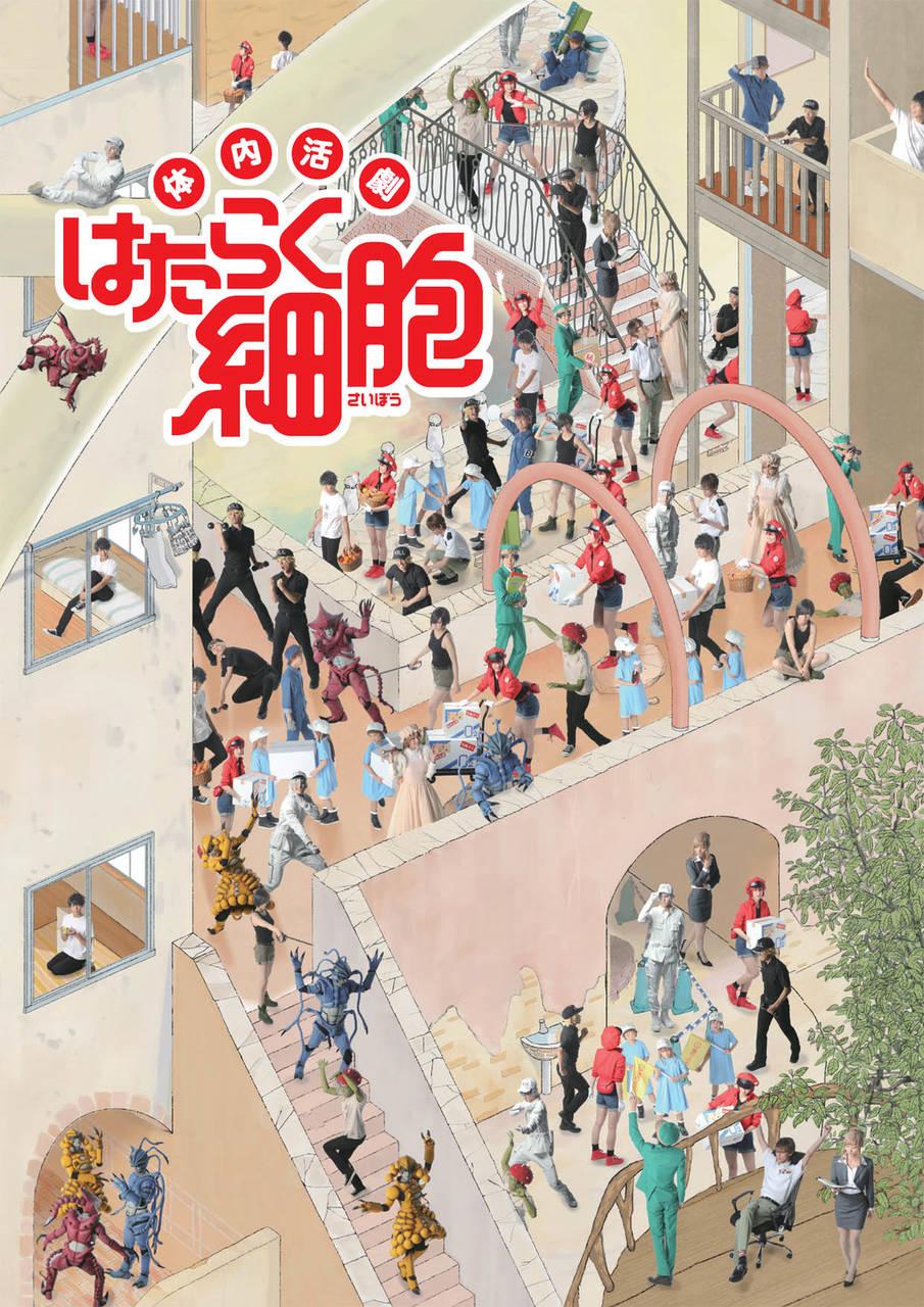 和田雅成、七木奏音らが出演、体内活劇『はたらく細胞』初演のニコ生配信が決定!