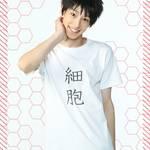 『体内活劇「はたらく細胞」Ⅱ』キャラクタービジュアル公開:写真4