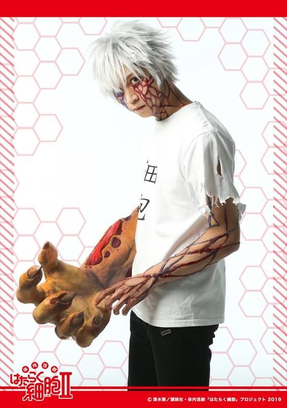 『体内活劇「はたらく細胞」Ⅱ』キャラクタービジュアル公開:写真5