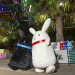 『アニメイトガールズフェスティバル(AGF)2019』来場者数が過去最大の10万人を突破!5