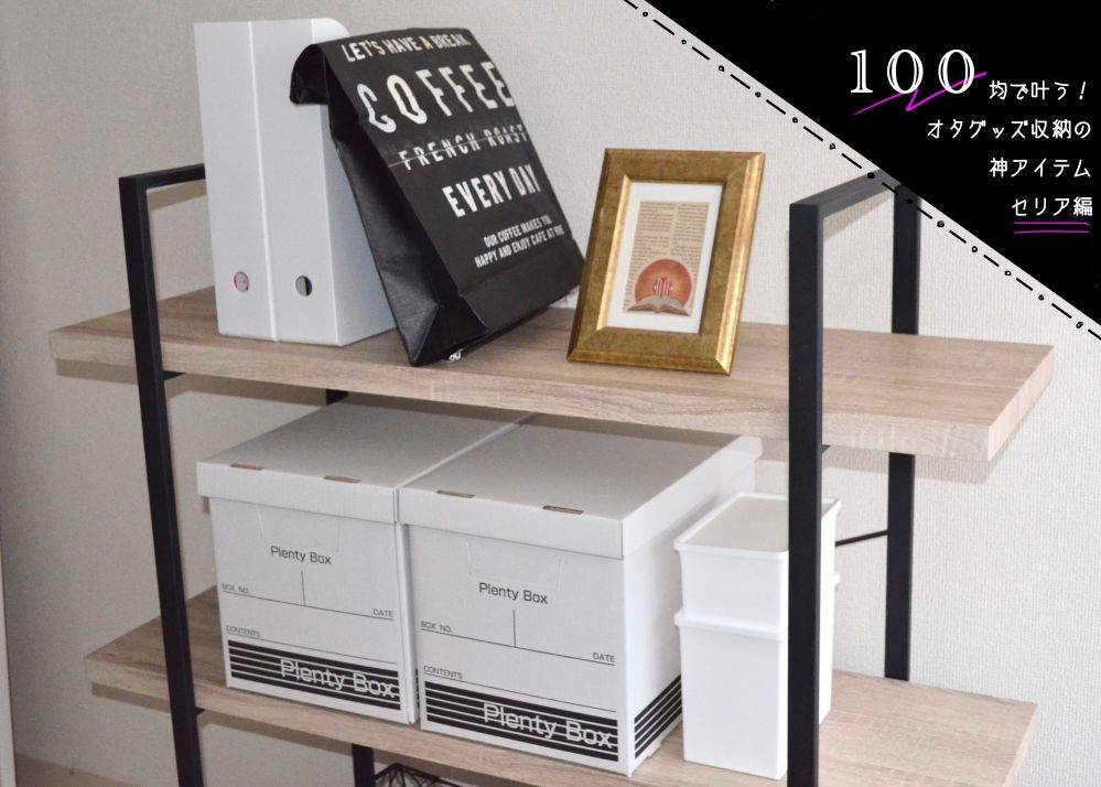 100均・セリアの「洗剤ケース」がオタグッズ収納にぴったり 写真1