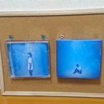 「コレサポ 飾れるCDケース 2枚入り」(株式会社ハピラ)2