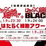 豪華キャスト集結!『はたらく細胞!!』&『はたらく細胞BLACK』合同イベント開催決定