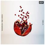 『憂国のモリアーティ』2クール目エンディング主題歌 「OMEGA」STEREO DIVE FOUNDATION