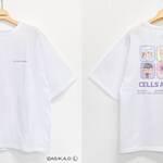 『はたらく細胞』×サンリオのコラボグッズ、イオン限定で順次発売!4