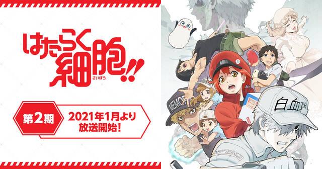 2021冬アニメ、ライターが選ぶおすすめ作品12選!『はたらく細胞‼』『ワートリ』『モルカー』『SK∞』etc.