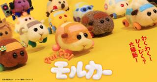 2021年1月5日より、テレビ東京系列の供向けバラエティ番組『きんだーてれび』内で放送中の『PUI PUI モルカー』(プイプイ モルカー)。2月9日に放送された、第6話「ゾンビとランチ」のSNSでの盛り上がりや感想を紹介!