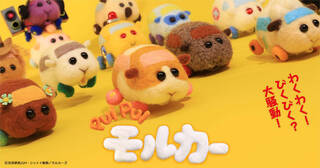 2021年1月5日より、テレビ東京系列の供向けバラエティ番組『きんだーてれび』内で放送中の『PUI PUI モルカー』(プイプイ モルカー)。3月23日に放送された、第12話(最終回)「Let's!モルカーパーティー!」のSNSでの盛り上がりや感想を紹介!